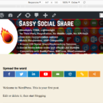 Sassy Social Share Premium - Responsive Icons